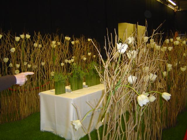 2010-gand-les-floralies-054
