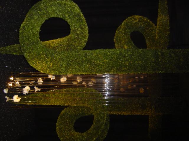 2010-gand-les-floralies-092