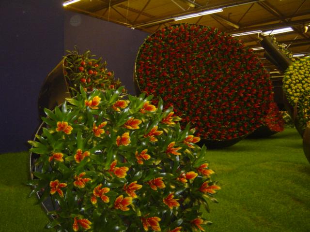 2010-gand-les-floralies-102