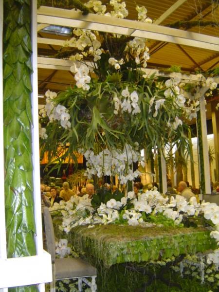 2010-gand-les-floralies-104