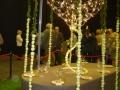 2010-gand-les-floralies-058