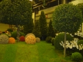 2010-gand-les-floralies-060