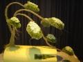 2010-gand-les-floralies-098