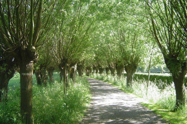 jardins_belgique_17