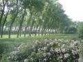 jardins_belgique_20