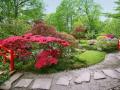 jardin4