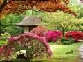 jardin9